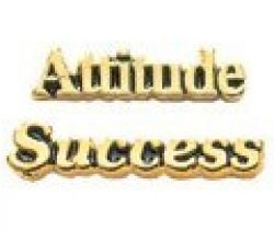 Attitude or Success Pins